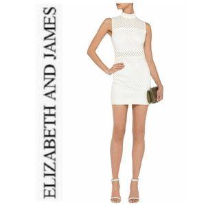 Elizabeth and James Neri Meshed-Back Mini Dress